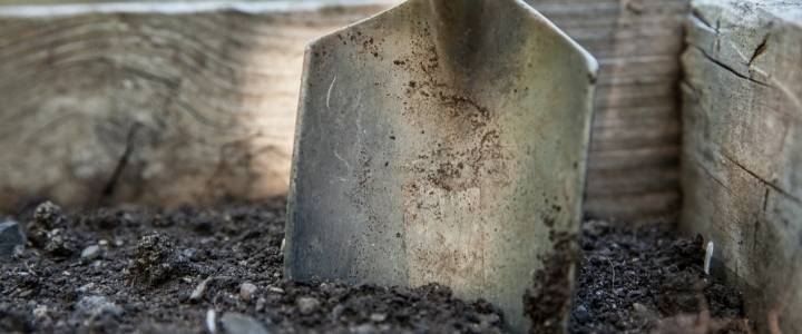 How To Build Your Healthy Garden Soil